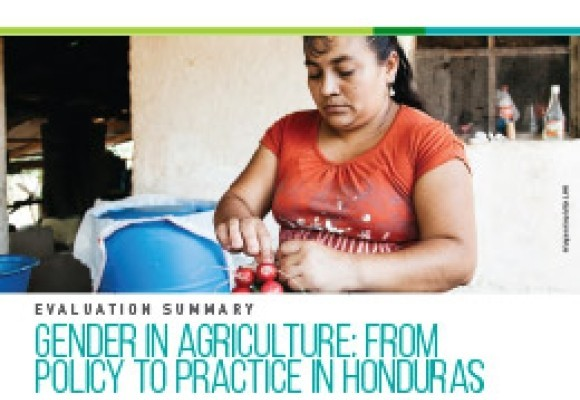 Gender in Agriculture: From Policy to Practice