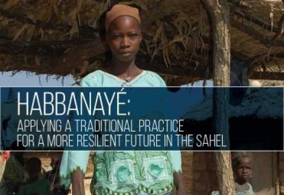 Habbanayé: Applying a Traditional Practice for a More Resilient Future in the Sahel